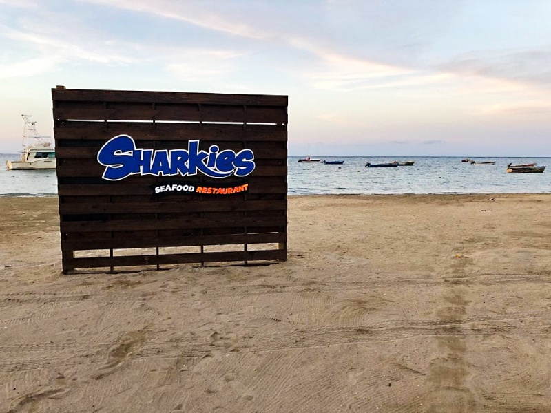 Sharkies on The Beach